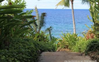 Comment organiser son voyage sur Bohol aux Philippines ?